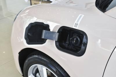 2021款 400km标准续航 维纳斯版 磷酸铁锂-外观-图片-有驾